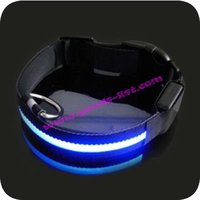 Lighted Dog Collar Manufacturer