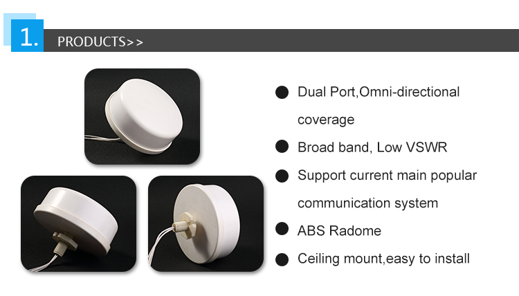 Dual port 4G ceiling mount antenna