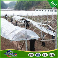 Most popular nice grade greenhouse plastic film in rolls