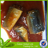 Factory price canned mackerel in tomato sauce for sale