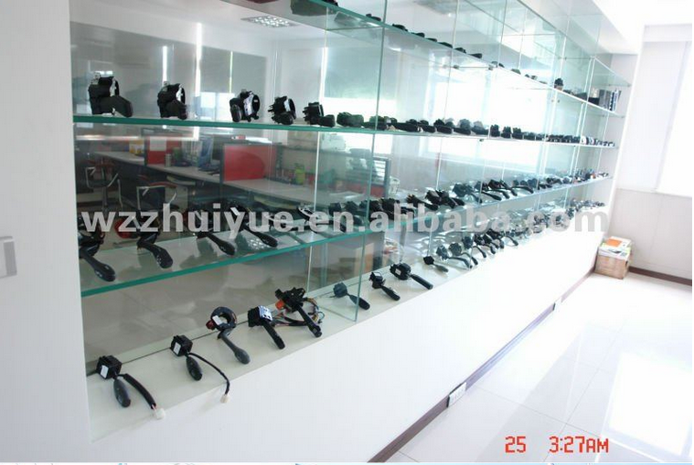 OEM High Quality Switch/Auto Switch/Ignition Switch