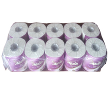 TP700 Custom Printed Plain Toilet Paper 2 Ply 10 rolls Pack Nice Tissue Paper