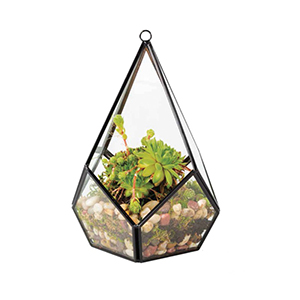 HX-8021F Wedding Copper Terrarium Glass Geometric