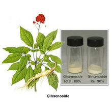Ginseng Extract For Ginseng Wine