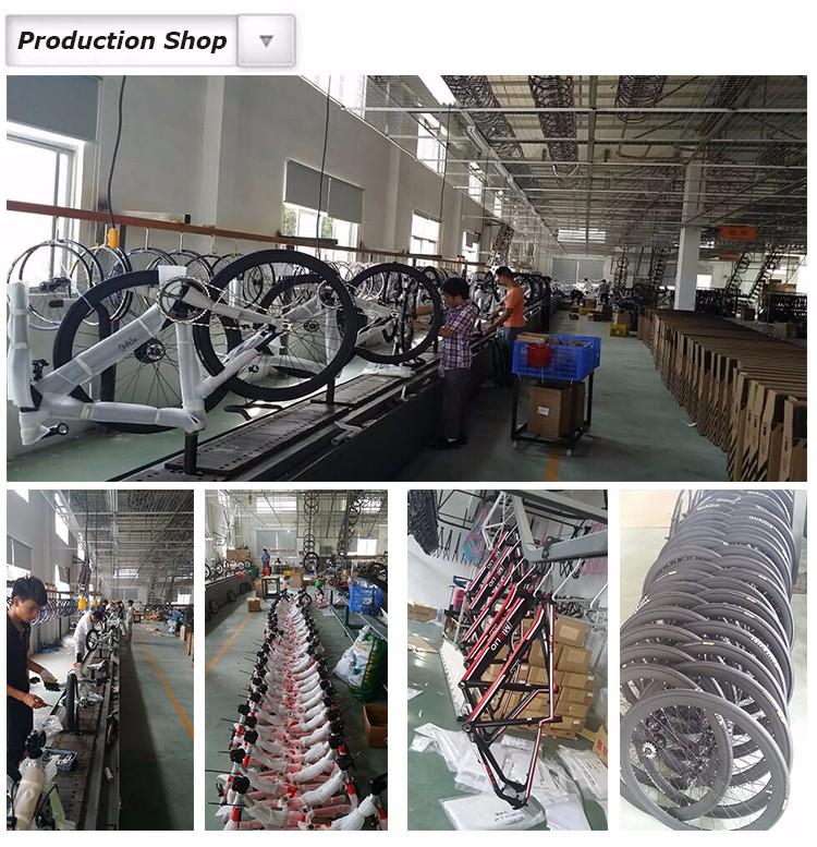 XTASY aluminum fixed gear bicycle wholesale,fixed gear bicycle