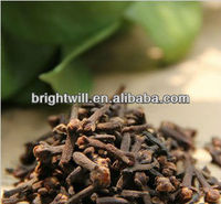 Clove,Syzygium aromaticum,Food seasoning