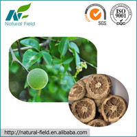 100% Natural Citrus Aurantium Fruit Extract Methyl Synephrine HCl 98%