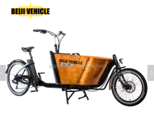 CE bakfiets front loading electric three wheel children tricycle two seat cargo bike