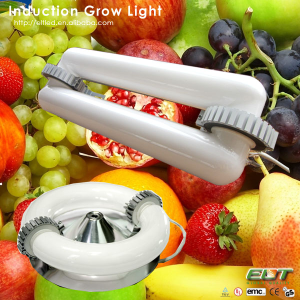 plant grow light item type magnetic induction cob led grow light