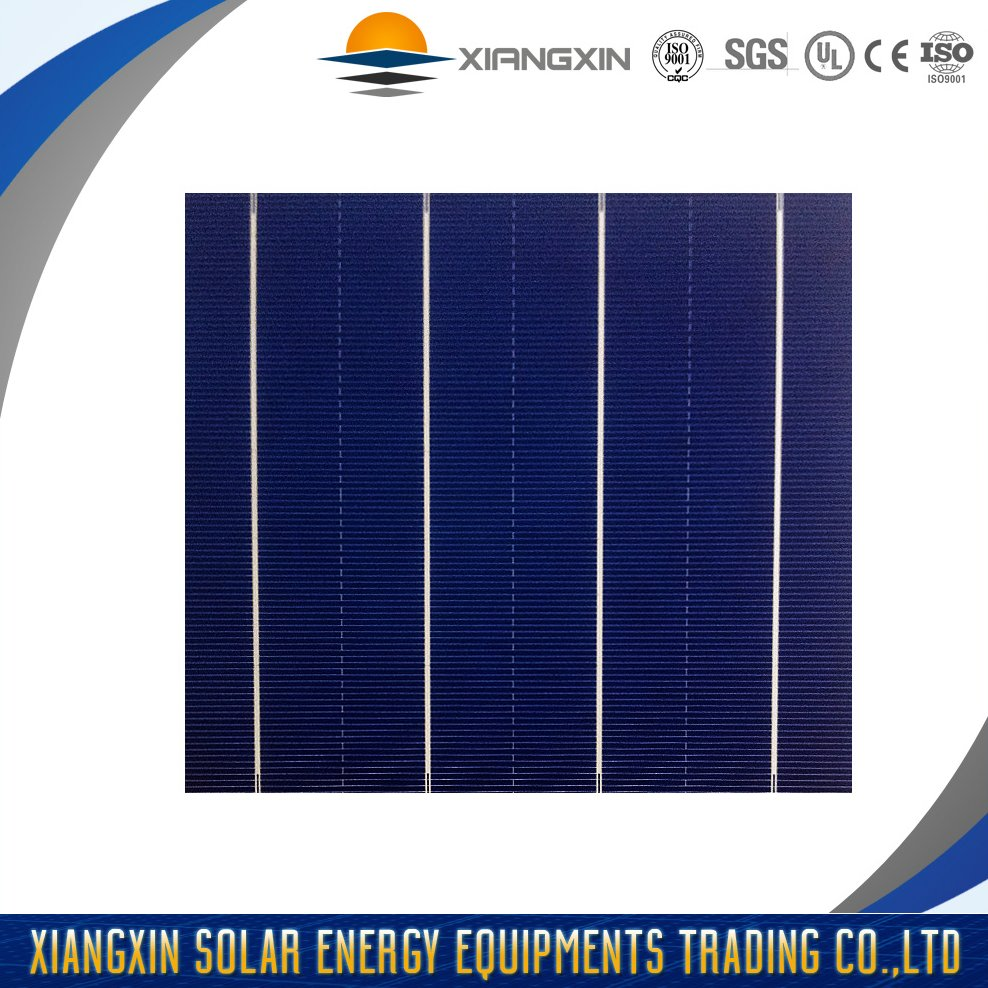 wholesale cheap 4BB poly solar cell