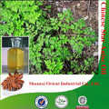 Natural & pure bulk anise oil with competitive price, star anise oil, Chinese star anise oil