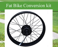 electric bike rear wheel conversion kit