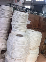 100% high quality high tensile strength nylon rope used for ship or marine