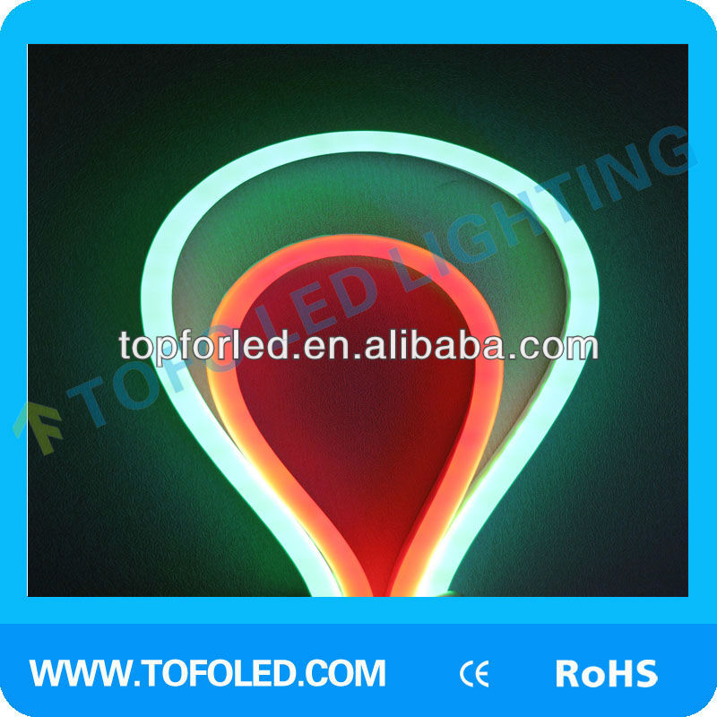flex 12v LED Neon light
