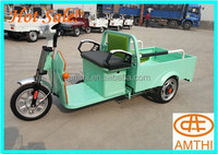 800W cargo electric tricycle with cabin for adults low prices , amthi