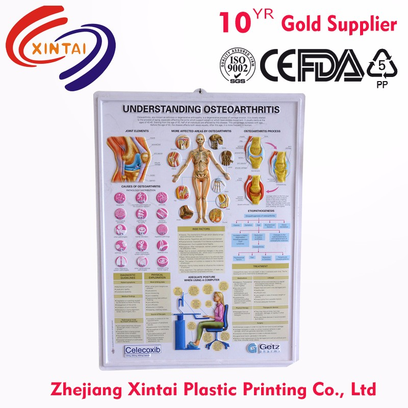 Factory Custom Design Printed 3d embossed Ad chart