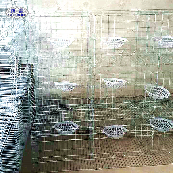 Shuxin New Type Steel Superior Fancy Pigeon Cages Racing Pigeon Breeding Cages For Sale
