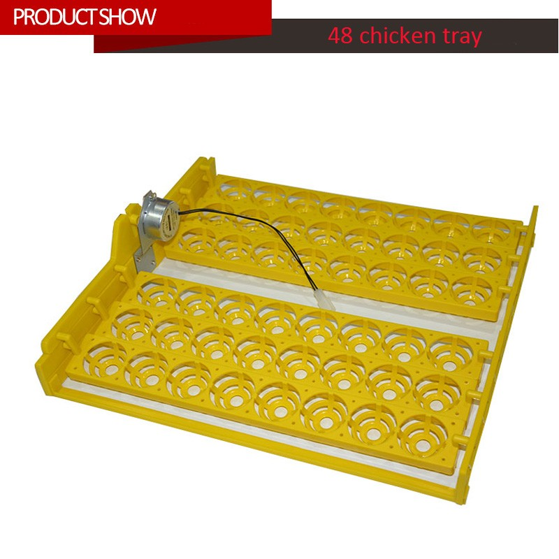 48 chicken eggs tray with high quality