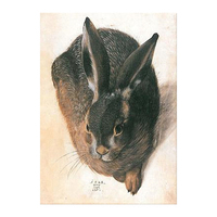 Reproduction Young Hare albrecht torithayer Durer Hybrid Bird Rabbit Albrecht Durer Famous Animal Paintings with frame