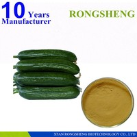 High quality cucumber extract food grade
