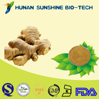 Factory Supply High Quality Ginger Root Extract