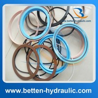 Hydraulic/ pneumatic cylinder seal kits repair kits