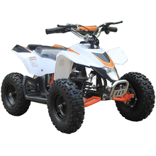 Upbeat 36V electric kid ATV mini quad 500W/800W/1000W