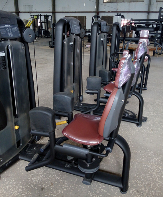 Cheap Rotary Torso Machine For Sale Commercial Gym
