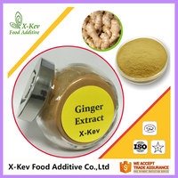 Factory Supply High Purity Ginger Extract Powder 5% Gingerol