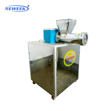 NEWEEK in stock Italy macaroni making hollow noodle production machine