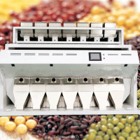 Raisin Processing Line Best Price Perfect Performance 2048 Pixels CCD Raisins Sorter