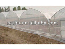 green house for Asia 6m width