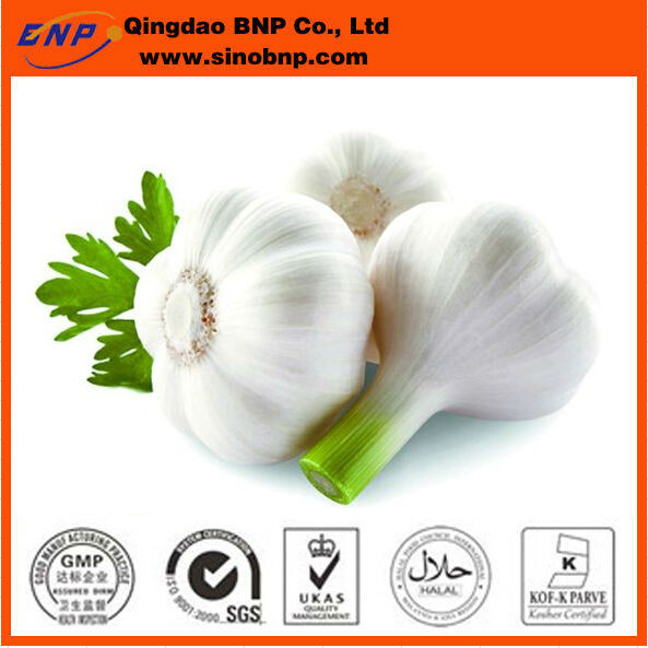 Pure Natural Garlic Granular(8-16, 16-26, 26-40, 40-60 Mesh),natural garlic extract allicin powder