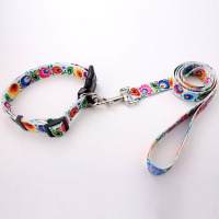 wholesale heat transfer printed polyester retractable pet dog collar leash in china