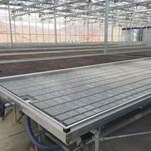 Greenhouse flower ebb and flood benches rolling trays