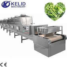 Vegetable Conveyor Microwave Dehydration Dryer Equipment Dryer Machine