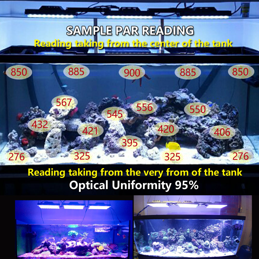 DSunY 80cm 32inch 4ft reef aquarium led lighting systems led aquarium controller dimmer timer