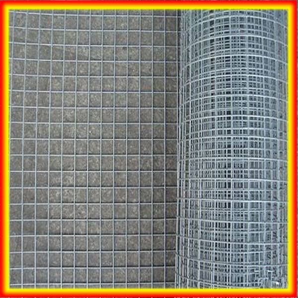 "3/4""Inch Galvanized Welded Wire Mesh / Bird Cage Welded Wire Mesh Roll / 1/4"" x 1/4"" Hot Dipped Galvanized Welded Wire Mesh Roll"