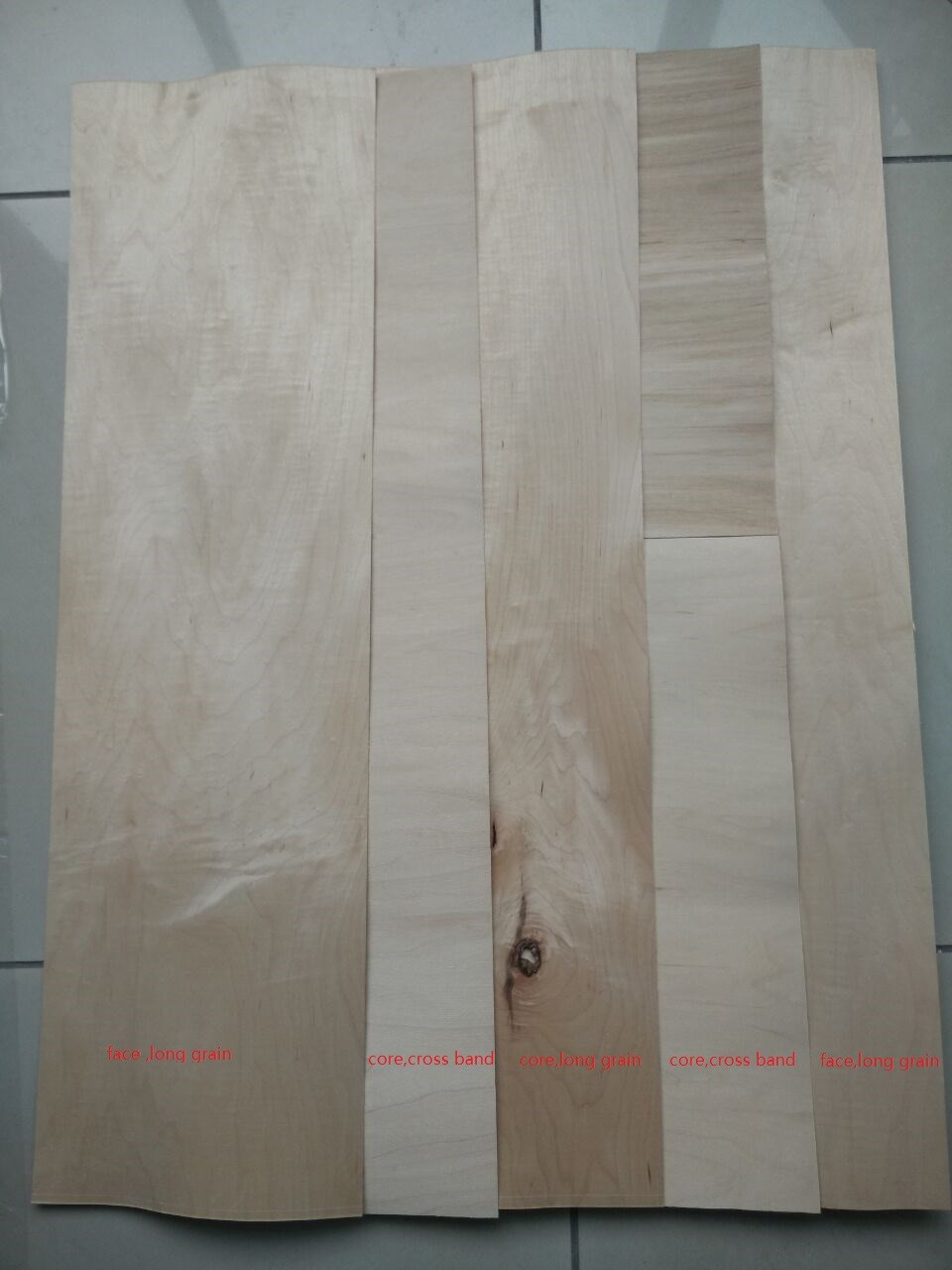 maple rotary cut veneer