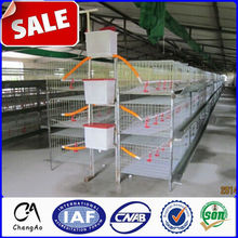 Small chicken coop cage design/poultry farming chicken cage system/farm chicken cage