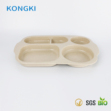 Popular BAP free 100% natural unbreakable bamboo plates for kids
