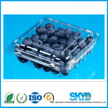 Plastic packing,Plastic PET blister fruit tray, blueberry box