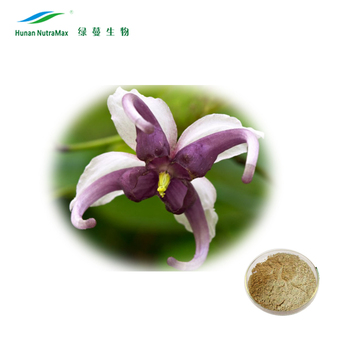 Horny Goat Weed Epimedium Extract Icariin Powder 5%10%20% CAS No: 489-32-7