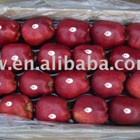 fresh sugar apple for sale fresh apple fruit wholesale distributors