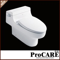 China wholesale custom hidden camera spy toilet