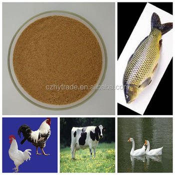 Layer chicken feed formula compound betaine
