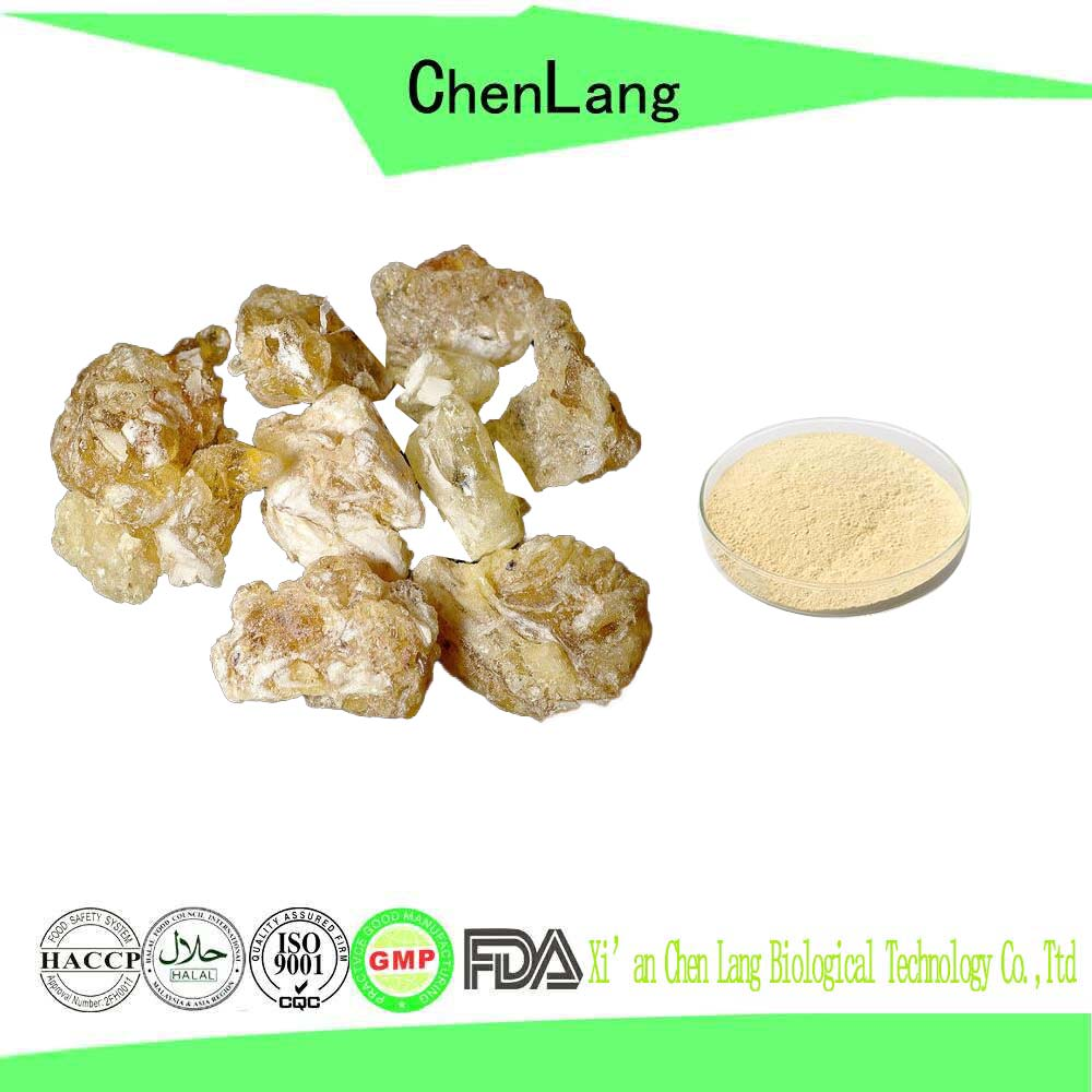 Rich in Boswellic Acid High Quality Natural Boswellia Serrata Extract Powder