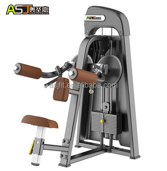 Populer / shoulder lateral raise /gym equipment with low price/new fitness equipment ASJ-S804