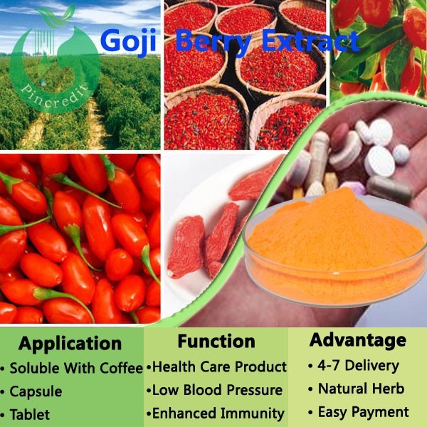 Goji extract powder/certified organic goji berry/goji berry extract