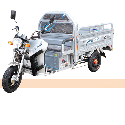 Economic motorcycle 48V 800W cheapest electric tricycle 3 wheel car mini car truck Cargo Trike